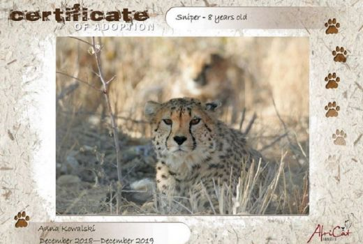 AfriCat Foundation NAMIBIA